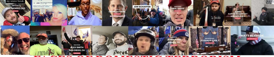 Faces Of Domestic Terrorism 2021 As Identified by Phoenix On Wheels Tumblr Account
